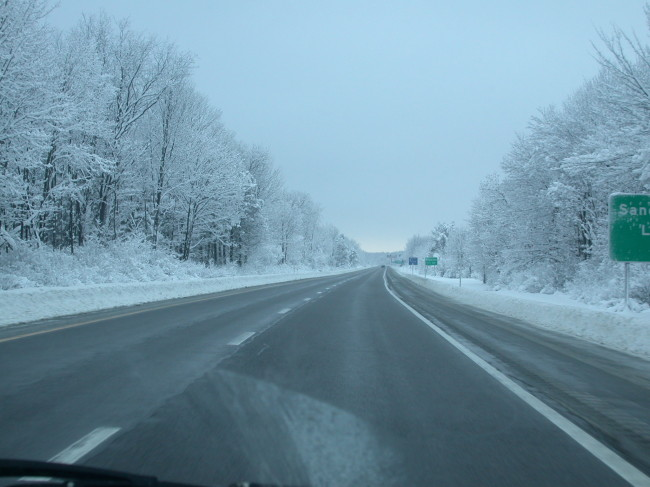 Driving south through a snowy treescape